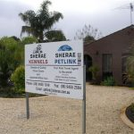Sherae Kennels and Cattery